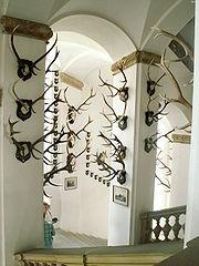 Royal Liechtenstein trophy collection at Úsov Château, the Czech Republic