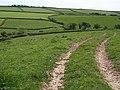 Valley below Eastdown - geograph.org.uk - 1323251.jpg