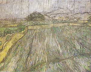 Wheat field in the rain