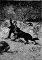 Verne - P'tit-bonhomme, Hetzel, 1906, Ill. page 204.png