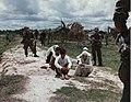 Vietcong suspects, Operation Fairfax, May 1967.jpg