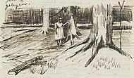 Vincent van Gogh - Girl in White in the Woods JH183.jpg