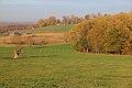 Vlaamse Ardennen 18.jpg