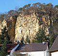 Von diesem Steinbruch kamen Steine für den Speyrer Dom. - panoramio.jpg