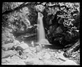 Wainui Falls Tyree Collection 1.jpg