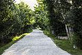 Walk through the Gardens in Swat, Pakistan.jpg