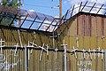 Wall of Crosses in Nogales 7.jpg