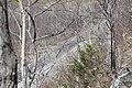 Waltz and Reece Cut - from top of cut - Lackawanna Cut-Off - April 13 2012.jpg