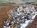 WasteFinalDeposited.jpg