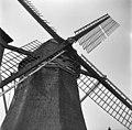 Watermolen, wieken - Baambrugge - 20026745 - RCE.jpg