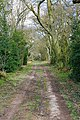 Wayfarer's Walk south of Breach Farm - geograph.org.uk - 353347.jpg