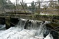 Weir at Padworth Mill - geograph.org.uk - 1189273.jpg