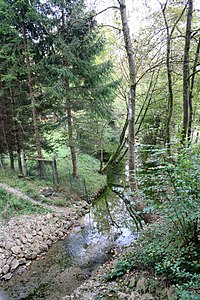 Wenzbach-bjs090924-01.jpg