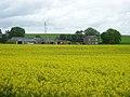 West Hillhead farm - geograph.org.uk - 17459.jpg