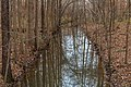 West Neck Creek Natural Area 1.jpg
