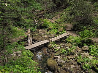 Skyline-to-the-Sea Trail - Image: West Waddell Creek