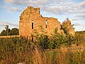 West face of the ruined Ash Barn, late evening - geograph.org.uk - 906845.jpg