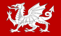 White Dragon Flag of England.png