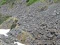 White Pass Railway - Trail of 98 (1).jpg