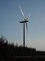 Wind Turbine in Whitelee Forest - geograph.org.uk - 1087927.jpg