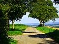 Witthoh - panoramio.jpg