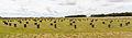 Woodhenge, Wiltshire, Inglaterra, 2014-08-12, DD 04.JPG