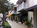 Worth Avenue sidewalk Palm Beach FL-1.jpg