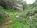 Yagur – Nesher, the Green Path – Mount Carmel 001.JPG