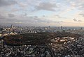 Yoyogi Park from Hyatt.jpg