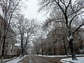 Zhukovsky street in winter 02.JPG