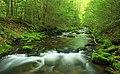 Zindel Park Trails (2) (34976363705).jpg