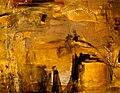 Zinnia Clavo 2008 Orilla del rio.jpg