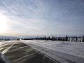 Árboles entre la nieve en Alaska.jpg