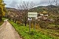 Čerišnjevica Istra.jpg