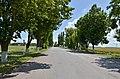 Автошлях C201524 «Автошлях М-19 — м'ясокомбінат» - 19065606.jpg
