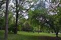 Біогрупа у сквері Васильєва. Фото 1.jpg