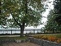 Вид на Каму с площадки сквера им.Ф.М.Решетникова.JPG