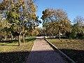 Дорожка в парке ниже Вечного огня - panoramio.jpg