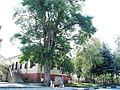Кметството на Гигинци.JPG