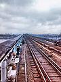 Міст метро, Київ2.jpg