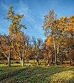 Парк Монрепо 3.jpg