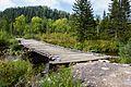 Первый мост (25.08.2011) - panoramio.jpg