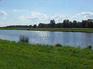 Krasnozyorsky District District in Novosibirsk Oblast, Russia