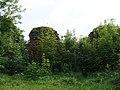 Руины замка Фишхаузен.jpg