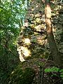 Скална глава - panoramio.jpg