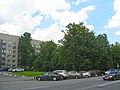 Сквер у НИИ пульмонологии.jpg