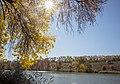Сонце надо озером біля дендропарку.jpg
