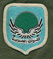 Шеврон Ливийских ВВС.jpg