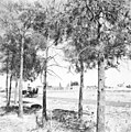 כפר תבור, הגליל התחתון-ZKlugerPhotos-00132nt-0907170685133bc2.jpg