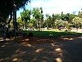 ריאה ירוקה במרכז תל אביב.jpg